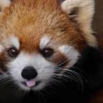 「市川市動植物園」に行ってきました!