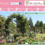 佐倉草ぶえの丘で「ローズフェスティバル」開催!(5/20-6/5)【佐倉フラワーフェスタ2016】