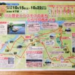 木下駅周辺を巡る「川と歴史とコスモスのまち ぶらり印西めぐり」に参加してきました!【JR東日本 駅からハイキング】